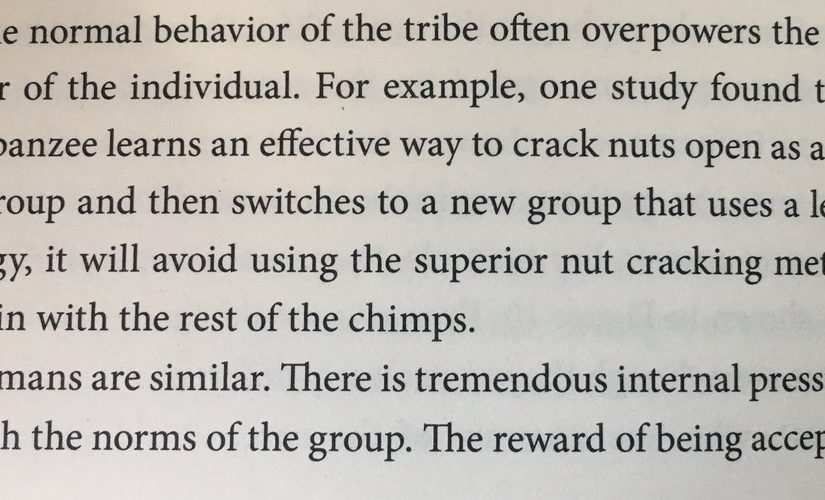 On conformity having deep roots (nut cracking)