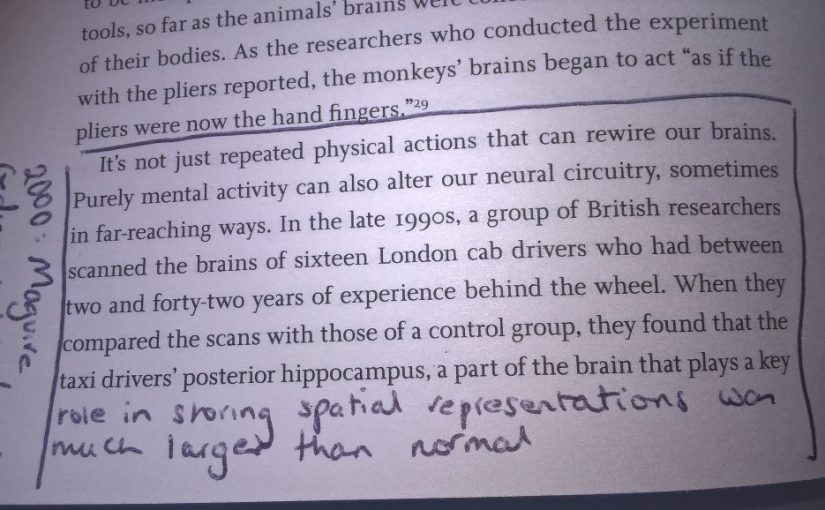 On how our behaviour can change the physical make up of our brain (e.g. London cab drivers)