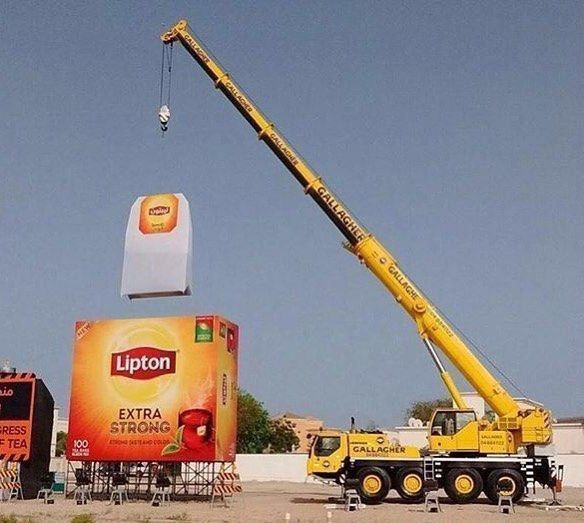 Lipton's extra strong tea