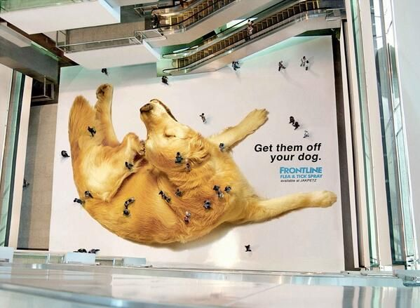 Frontline's huge flea and tick spray ad in a mall